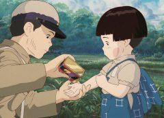 Die letzten Glühwürmchen – Hotaru No Haka